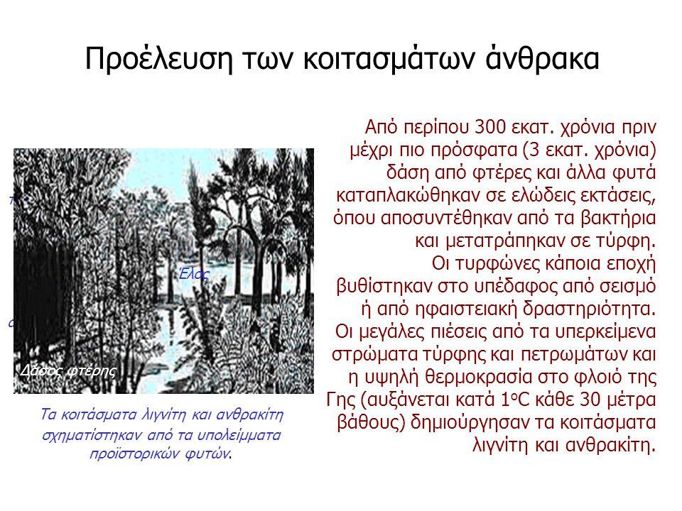 Από περίπου 300 εκατ. χρόνια πριν μέχρι πιο πρόσφατα (3 εκατ. χρόνια) δάση από φτέρες και άλλα φυτά καταπλακώθηκαν σε ελώδεις εκτάσεις, όπου αποσυντέθ