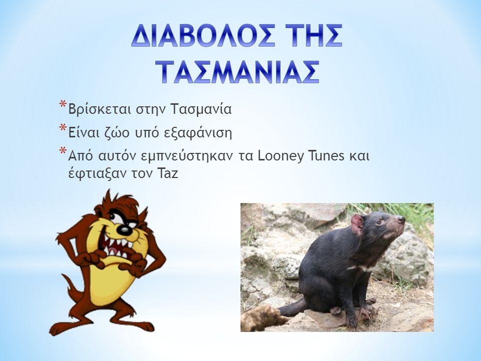 * Βρίσκεται στην Τασμανία * Είναι ζώο υπό εξαφάνιση * Από αυτόν εμπνεύστηκαν τα Looney Tunes και έφτιαξαν τον Taz