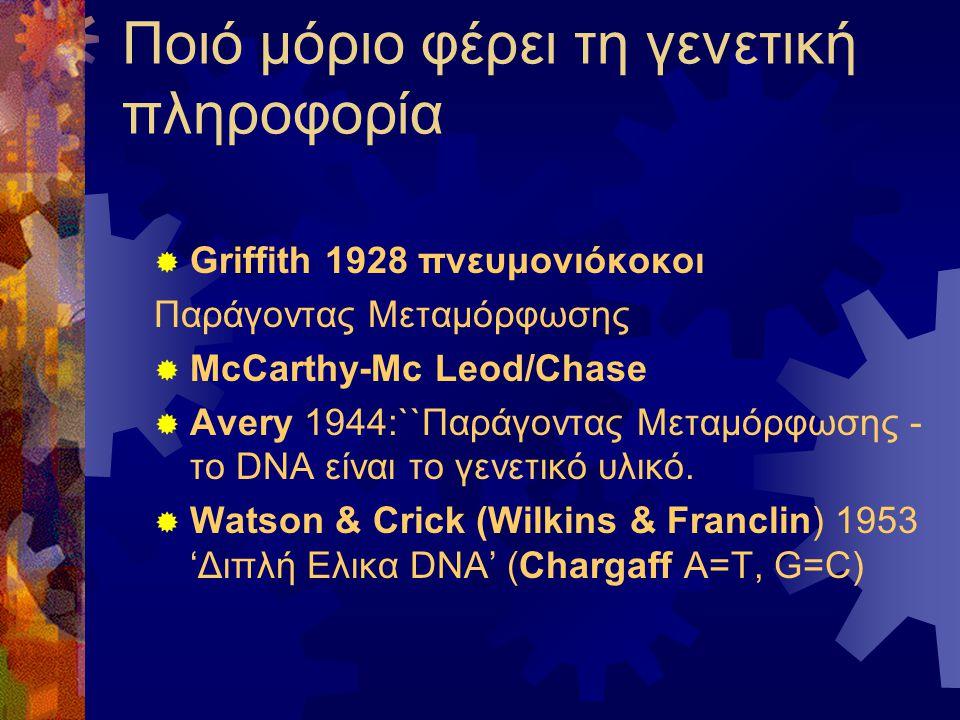 Ποιό μόριο φέρει τη γενετική πληροφορία  Griffith 1928 πνευμονιόκοκοι Παράγοντας Μεταμόρφωσης  McCarthy-Mc Leod/Chase  Avery 1944:``Παράγοντας Μετα