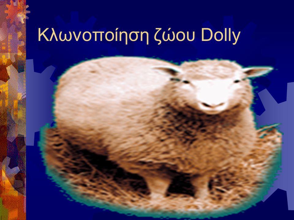 Kλωνοποίηση ζώου Dolly