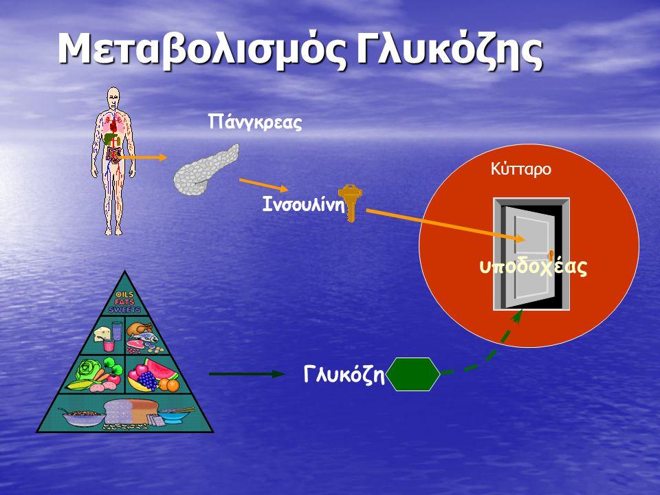 Μεταβολισμός Γλυκόζης υποδοχέας Γλυκόζη Ινσουλίνη Πάνγκρεας Κύτταρο