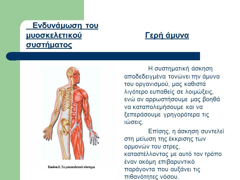 Ενδυνάμωση του μυοσκελετικού συστήματος Γερή άμυνα Η συστηματική άσκηση αποδεδειγμένα τονώνει την άμυνα του οργανισμού, μας καθιστά λιγότερο ευπαθείς