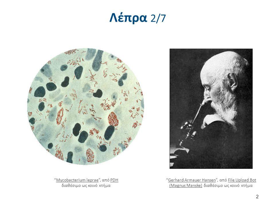 Θεραπεία της λέπρας 2/4 Από το 1982, η ΠΟΥ συνιστούσε, πως σε πολύμορφες κλινικές οντότητες της λέπρας, η δαψόνη πρέπει να δίδεται καθημερινά μαζί με ριφαμπικίνη και κλοφαζιμίνη.