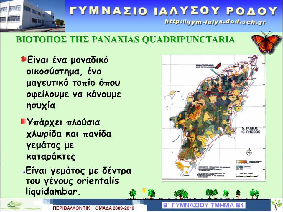 ΒΙΟΤΟΠΟΣ ΤΗΣ PANAXIAS QUADRIPUNCTARIA Είναι ένα μοναδικό οικοσύστημα, ένα μαγευτικό τοπίο όπου οφείλουμε να κάνουμε ησυχία Υπάρχει πλούσια χλωρίδα και πανίδα γεμάτος με καταράκτες Είναι γεμάτος με δέντρα του γένους orientalis liquidambar.