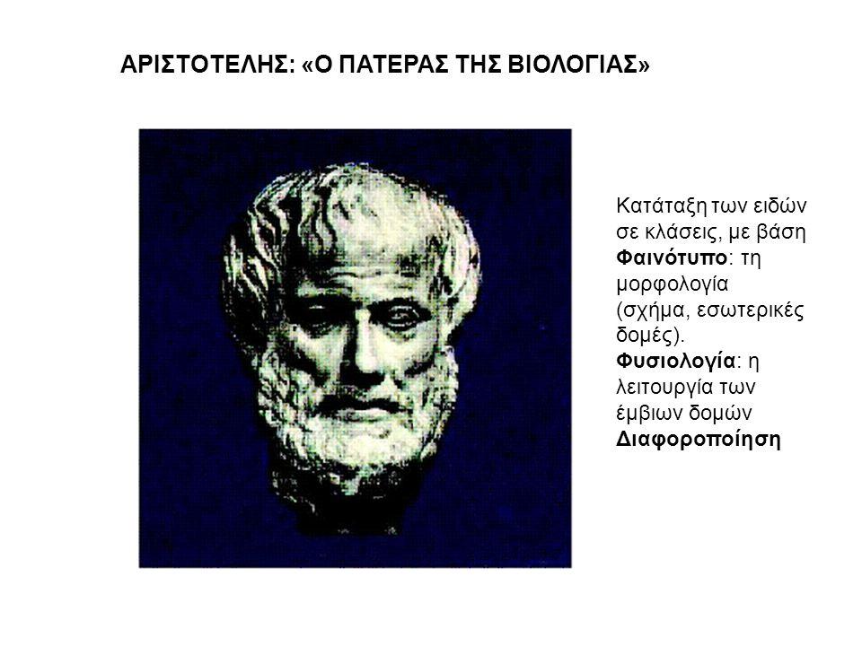 ΑΡΙΣΤΟΤΕΛΗΣ: «Ο ΠΑΤΕΡΑΣ ΤΗΣ ΒΙΟΛΟΓΙΑΣ» Κατάταξη των ειδών σε κλάσεις, με βάση Φαινότυπο: τη μορφολογία (σχήμα, εσωτερικές δομές). Φυσιολογία: η λειτου