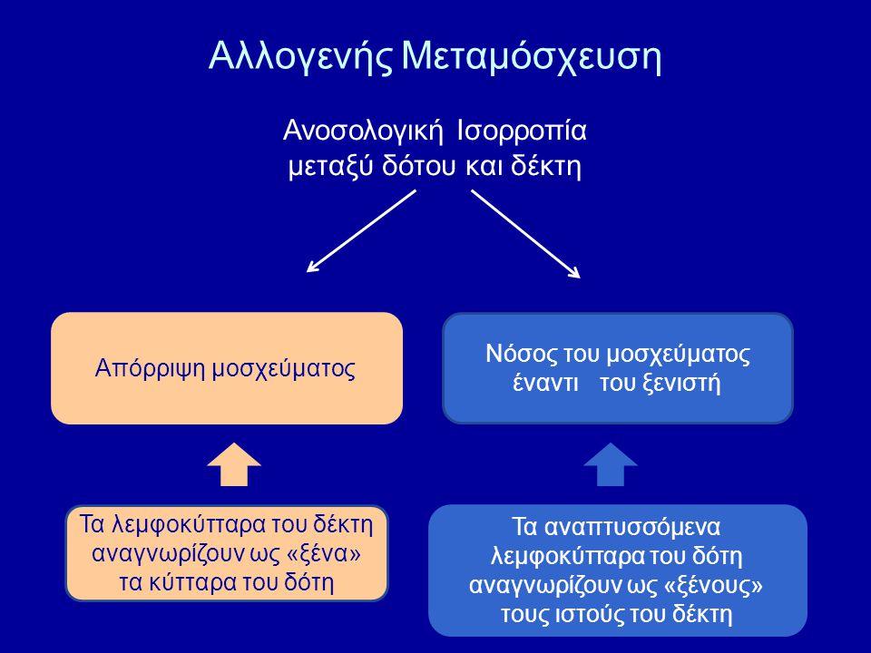 Αλλογενής Μεταμόσχευση Ανοσολογική Ισορροπία μεταξύ δότου και δέκτη Απόρριψη μοσχεύματος Νόσος του μοσχεύματος έναντιτου ξενιστή Τα λεμφοκύτταρα του δ