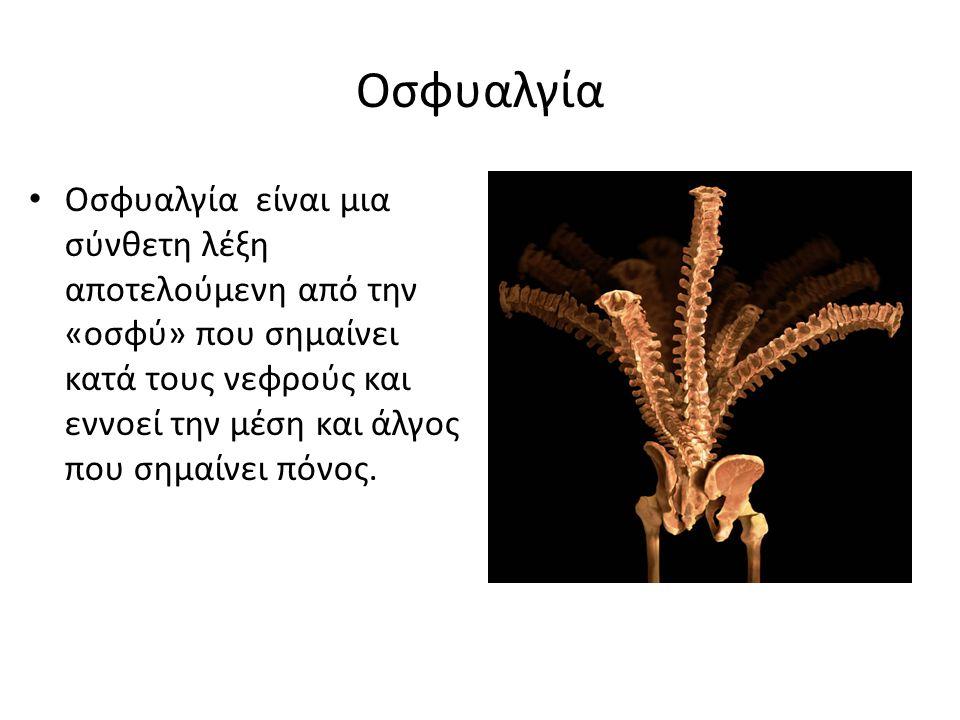 Οσφυαλγία Οσφυαλγία είναι μια σύνθετη λέξη αποτελούμενη από την «οσφύ» που σημαίνει κατά τους νεφρούς και εννοεί την μέση και άλγος που σημαίνει πόνος