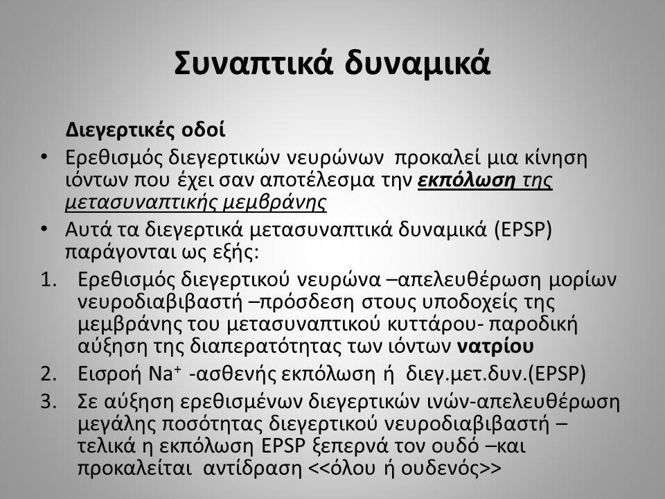 Συναπτικά δυναμικά Διεγερτικές οδοί Ερεθισμός διεγερτικών νευρώνων προκαλεί μια κίνηση ιόντων που έχει σαν αποτέλεσμα την εκπόλωση της μετασυναπτικής μεμβράνης Αυτά τα διεγερτικά μετασυναπτικά δυναμικά (EPSP) παράγονται ως εξής: 1.Ερεθισμός διεγερτικού νευρώνα –απελευθέρωση μορίων νευροδιαβιβαστή –πρόσδεση στους υποδοχείς της μεμβράνης του μετασυναπτικού κυττάρου- παροδική αύξηση της διαπερατότητας των ιόντων νατρίου 2.Εισροή Νa + -ασθενής εκπόλωση ή διεγ.μετ.δυν.(EPSP) 3.Σε αύξηση ερεθισμένων διεγερτικών ινών-απελευθέρωση μεγάλης ποσότητας διεγερτικού νευροδιαβιβαστή – τελικά η εκπόλωση EPSP ξεπερνά τον ουδό –και προκαλείται αντίδραση >