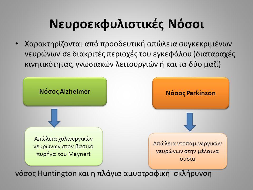 Νευροεκφυλιστικές Νόσοι Χαρακτηρίζονται από προοδευτική απώλεια συγκεκριμένων νευρώνων σε διακριτές περιοχές του εγκεφάλου (διαταραχές κινητικότητας, γνωσιακών λειτουργιών ή και τα δύο μαζί) νόσος Ηuntington και η πλάγια αμυοτροφική σκλήρυνση Νόσος Αlzheimer Νόσος Parkinson Απώλεια χολινεργικών νευρώνων στον βασικό πυρήνα του Maynert Απώλεια ντοπαμινεργικών νευρώνων στην μέλαινα ουσία