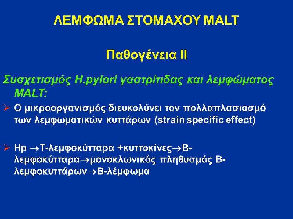 ΛΕΜΦΩΜΑ ΣΤΟΜΑΧΟΥ MALT Παθογένεια ΙΙ Συσχετισμός H.pylori γαστρίτιδας και λεμφώματος MALT:  Ο μικροοργανισμός διευκολύνει τον πολλαπλασιασμό των λεμφωματικών κυττάρων (strain specific effect)  Hp  T-λεμφοκύτταρα +κυττοκίνες  Β- λεμφοκύτταρα  μονοκλωνικός πληθυσμός Β- λεμφοκυττάρων  Β-λέμφωμα