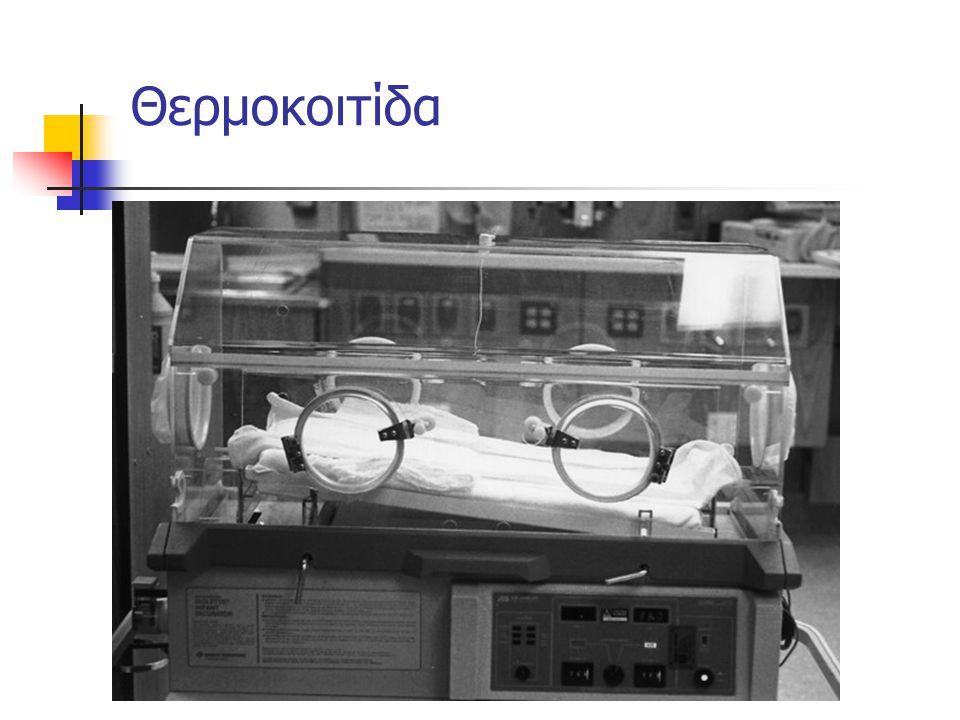 Θερμοκοιτίδα