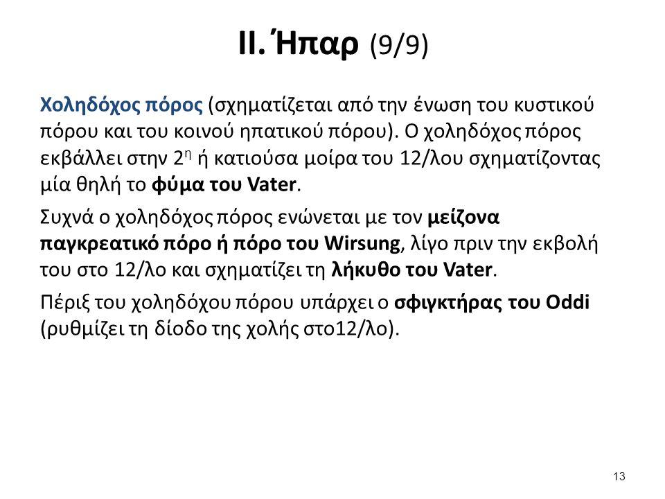 ΙΙ. Ήπαρ (9/9) Χοληδόχος πόρος (σχηματίζεται από την ένωση του κυστικού πόρου και του κοινού ηπατικού πόρου). Ο χοληδόχος πόρος εκβάλλει στην 2 η ή κα
