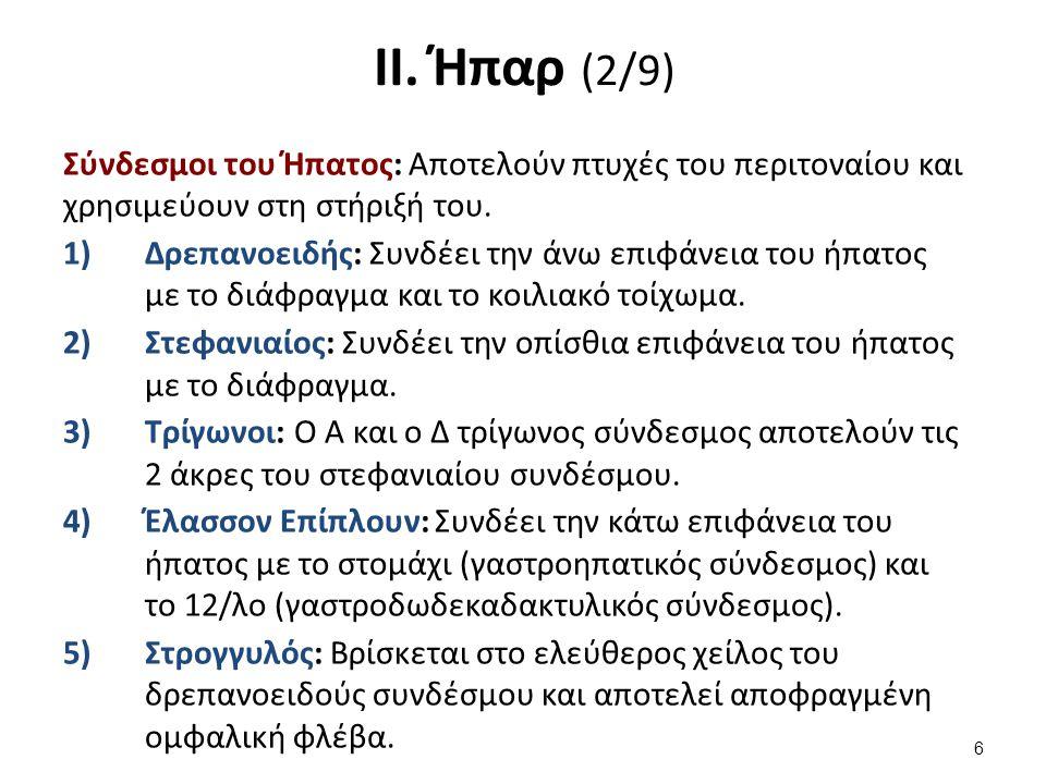 ΙΙ. Ήπαρ (2/9) Σύνδεσμοι του Ήπατος: Aποτελούν πτυχές του περιτοναίου και χρησιμεύουν στη στήριξή του. 1)Δρεπανοειδής: Συνδέει την άνω επιφάνεια του ή