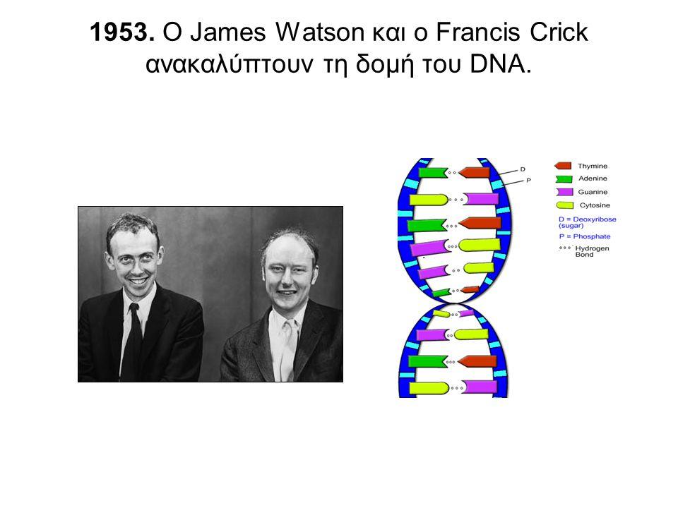 1953. O James Watson και o Francis Crick ανακαλύπτουν τη δομή του DNA.
