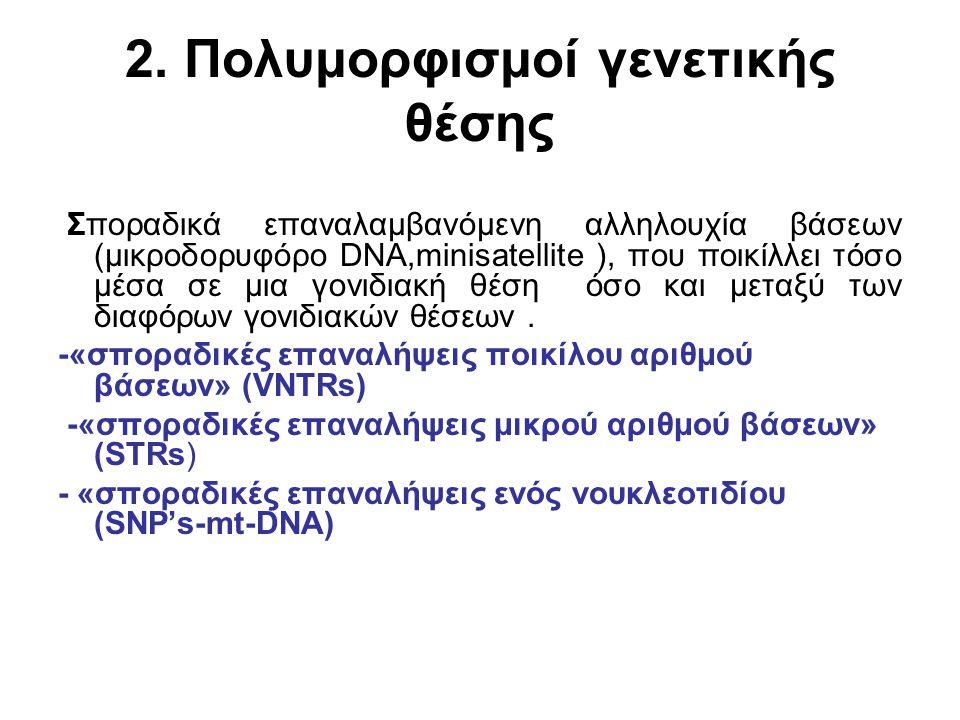 2. Πολυμορφισμοί γενετικής θέσης Σποραδικά επαναλαμβανόμενη αλληλουχία βάσεων (μικροδορυφόρο DNA,minisatellite ), που ποικίλλει τόσο μέσα σε μια γονιδ