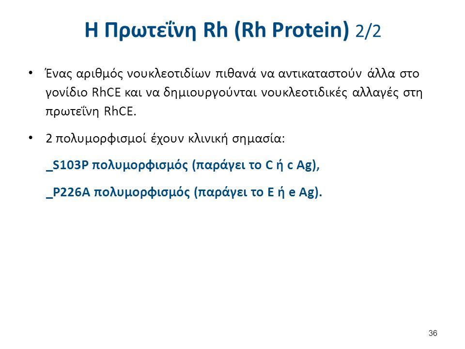 H Πρωτεΐνη Rh (Rh Protein) 1/2 Τα γονίδια RHD και RHCE κωδικοποιούν μία διαμεμβρανική πρωτεΐνη (>400 κατάλοιπα). Διαπερνάει τη μεμβράνη 12 φορές. Η πρ