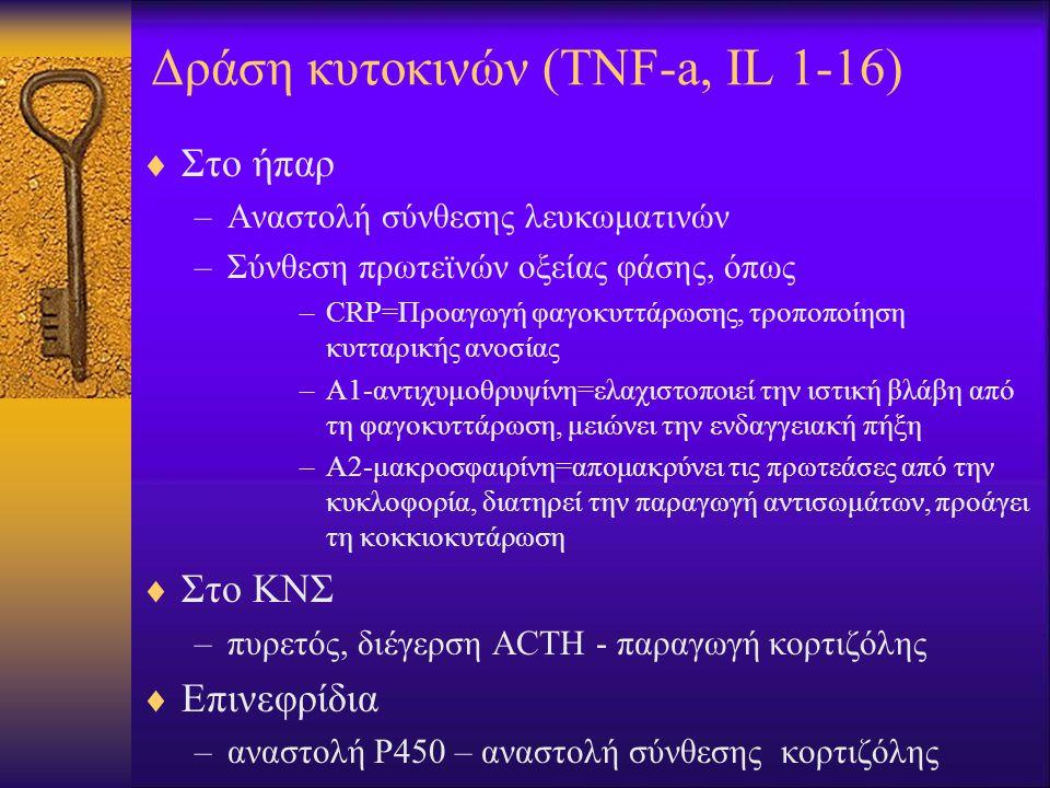 Δράση κυτοκινών (TNF-a, IL 1-16)  Στο ήπαρ –Αναστολή σύνθεσης λευκωματινών –Σύνθεση πρωτεϊνών οξείας φάσης, όπως –CRP=Προαγωγή φαγοκυττάρωσης, τροποποίηση κυτταρικής ανοσίας –Α1-αντιχυμοθρυψίνη=ελαχιστοποιεί την ιστική βλάβη από τη φαγοκυττάρωση, μειώνει την ενδαγγειακή πήξη –Α2-μακροσφαιρίνη=απομακρύνει τις πρωτεάσες από την κυκλοφορία, διατηρεί την παραγωγή αντισωμάτων, προάγει τη κοκκιοκυτάρωση  Στο ΚΝΣ –πυρετός, διέγερση ACTH - παραγωγή κορτιζόλης  Επινεφρίδια –αναστολή Ρ450 – αναστολή σύνθεσης κορτιζόλης