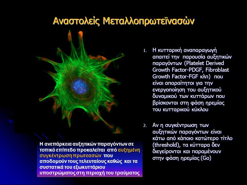 1. Η κυτταρική αναπαραγωγή απαιτεί την παρουσία αυξητικών παραγόντων (Platelet Derived Growth Factor-PDGF, Fibroblast Growth Factor-FGF κλπ) που είναι