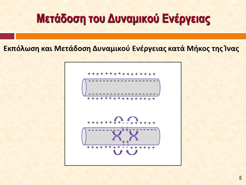 Μυϊκή Συστολή [3/4]  Το παραγόμενο δυναμικό ενεργείας και, στη συνέχεια, η απελευθέρωση των ιόντων ασβεστίου προκαλούν την, παρουσία ATP, αλληλεπίδραση των εγκάρσιων γεφυρών στα νημάτια της ακτίνης με τα νημάτια της μυοσίνης.