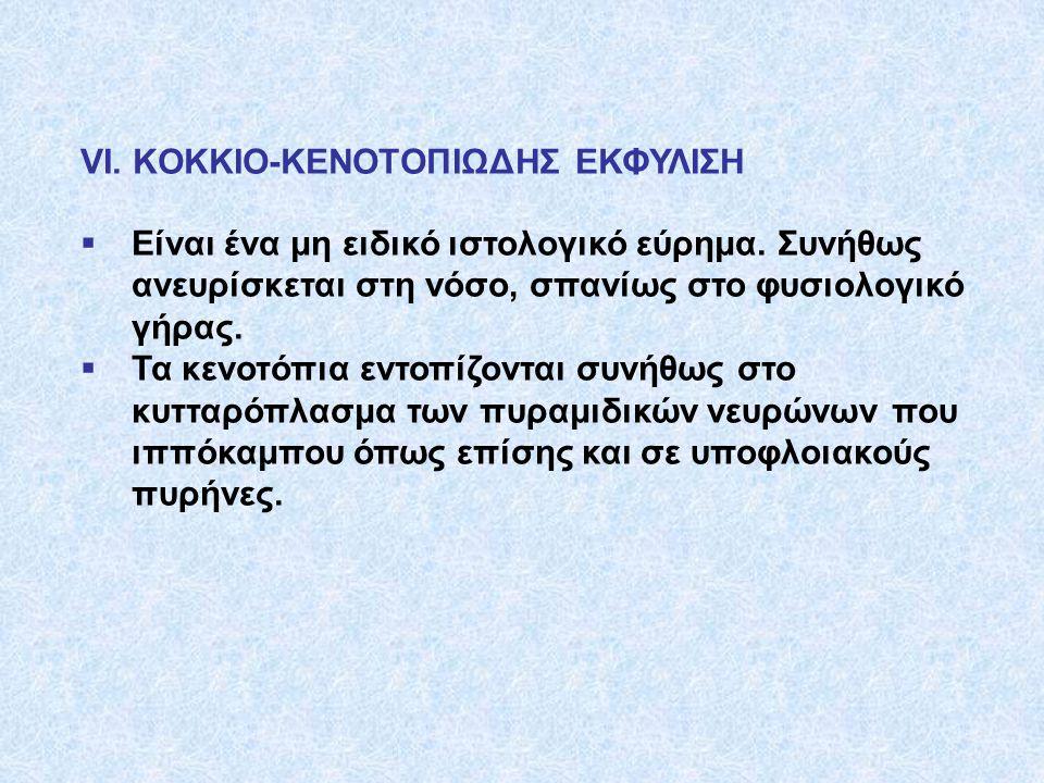VI. KOKKIO-KENOTOΠΙΩΔΗΣ ΕΚΦΥΛΙΣΗ  Είναι ένα μη ειδικό ιστολογικό εύρημα. Συνήθως ανευρίσκεται στη νόσο, σπανίως στο φυσιολογικό γήρας.  Τα κενοτόπια