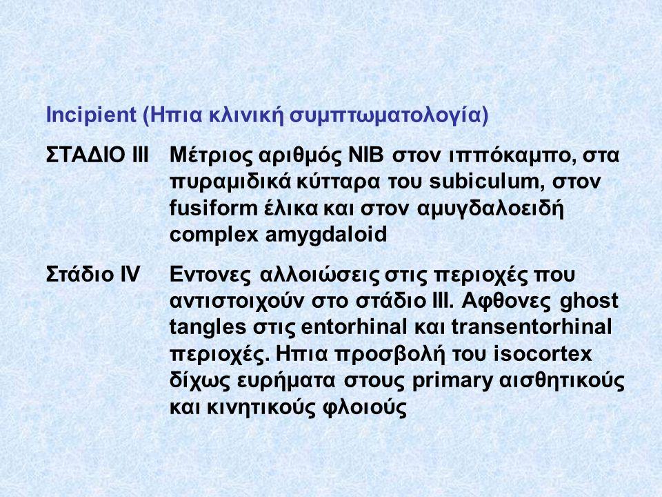 Incipient (Ηπια κλινική συμπτωματολογία) ΣΤΑΔΙΟ ΙΙΙΜέτριος αριθμός ΝΙΒ στον ιππόκαμπο, στα πυραμιδικά κύτταρα του subiculum, στον fusiform έλικα και σ