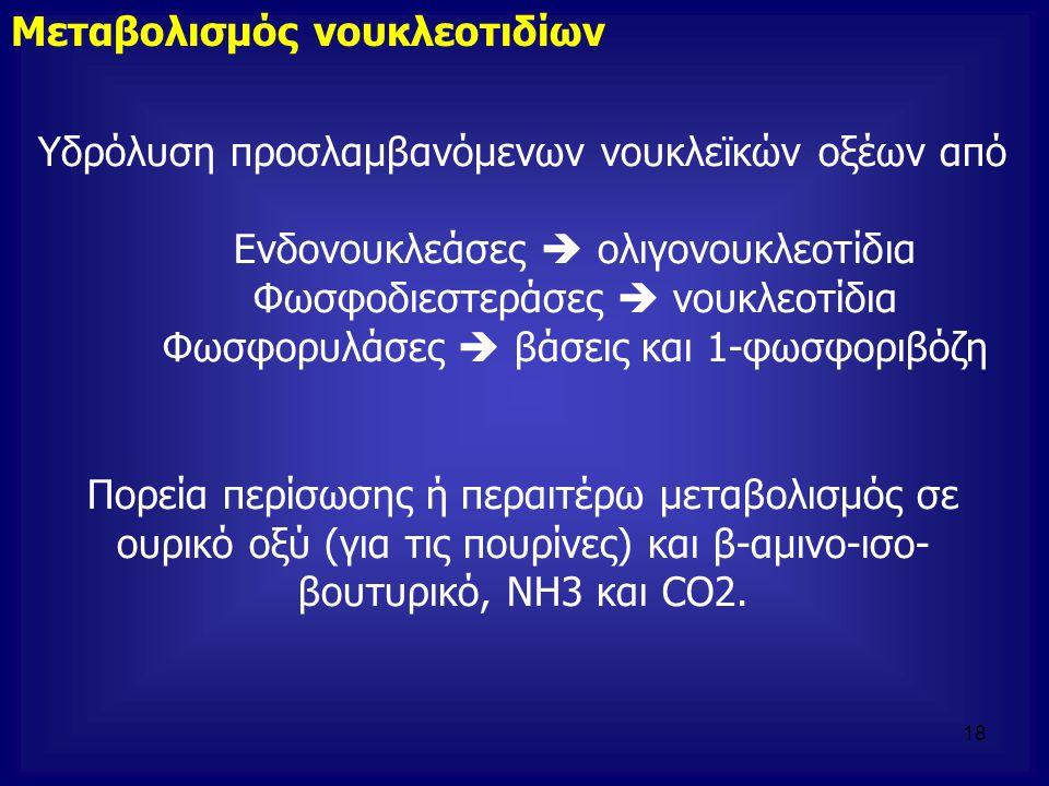 Υδρόλυση προσλαμβανόμενων νουκλεϊκών οξέων από Ενδονουκλεάσες  ολιγονουκλεοτίδια Φωσφοδιεστεράσες  νουκλεοτίδια Φωσφορυλάσες  βάσεις και 1-φωσφοριβ
