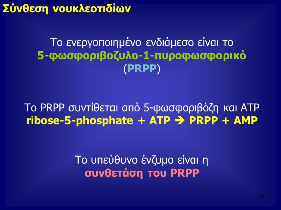 Το ενεργοποιημένο ενδιάμεσο είναι το 5-φωσφοριβοζυλο-1-πυροφωσφορικό (PRPP) Το PRPP συντίθεται από 5-φωσφοριβόζη και ΑΤΡ ribose-5-phosphate + ATP  PR