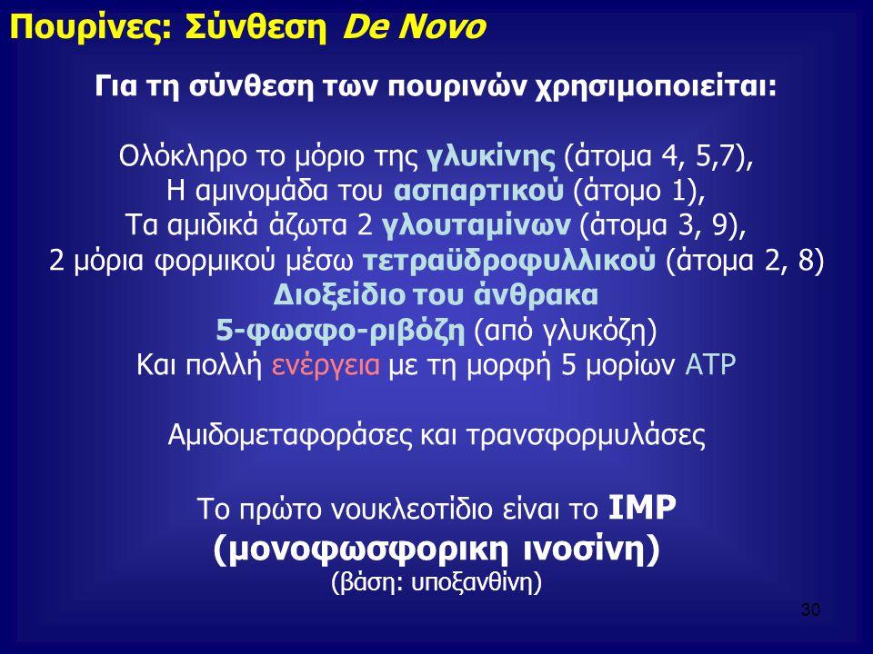Για τη σύνθεση των πουρινών χρησιμοποιείται: Ολόκληρο το μόριο της γλυκίνης (άτομα 4, 5,7), Η αμινομάδα του ασπαρτικού (άτομο 1), Τα αμιδικά άζωτα 2 γ