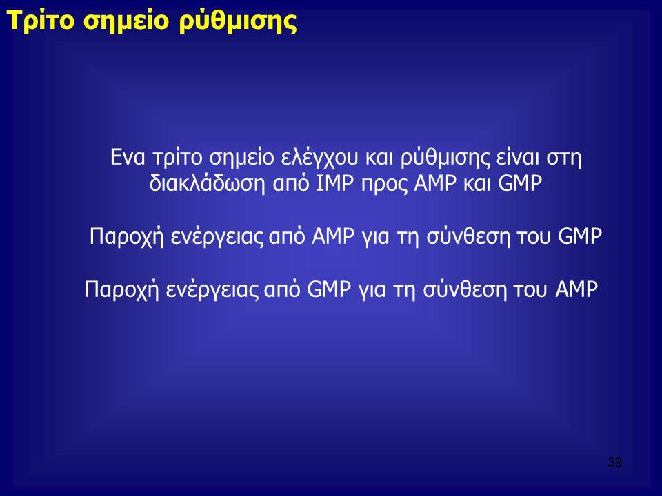 Τρίτο σημείο ρύθμισης Ενα τρίτο σημείο ελέγχου και ρύθμισης είναι στη διακλάδωση από ΙΜΡ προς ΑΜΡ και GMP Παροχή ενέργειας από ΑΜΡ για τη σύνθεση του