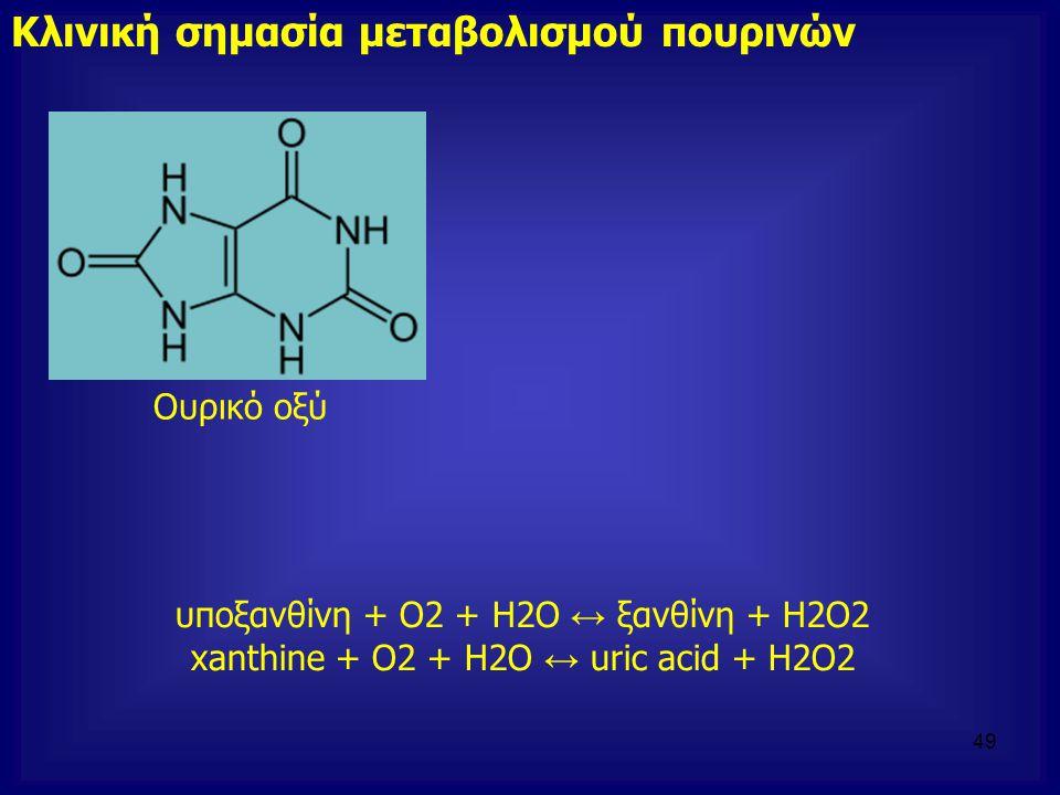 Κλινική σημασία μεταβολισμού πουρινών Ουρικό οξύ υποξανθίνη + O2 + H2O ↔ ξανθίνη + H2O2 xanthine + O2 + H2O ↔ uric acid + H2O2 49