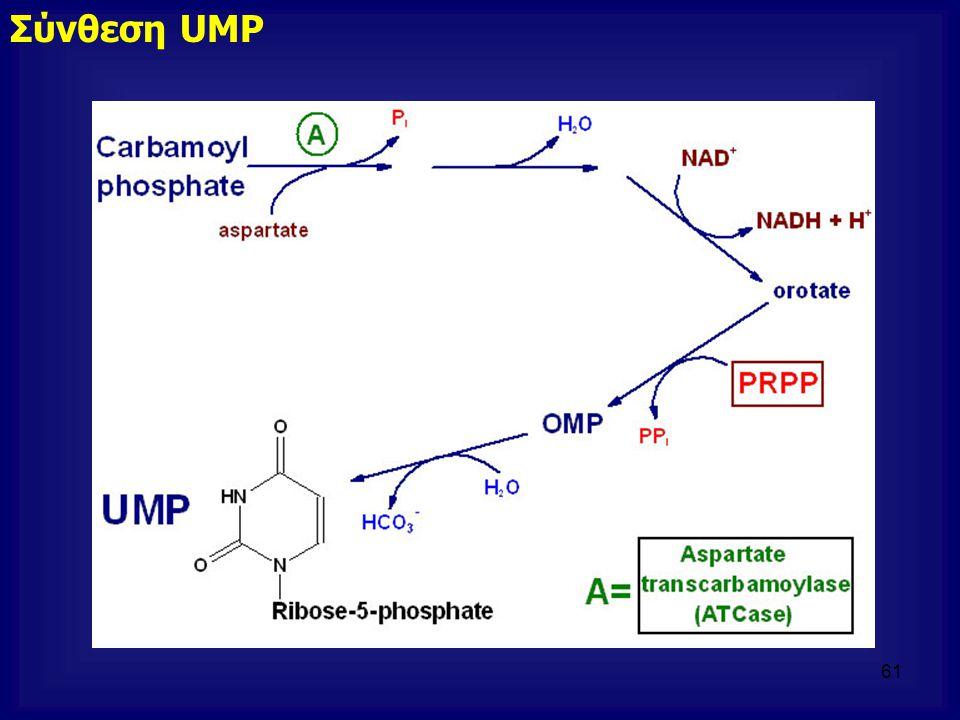 Σύνθεση UMP 61