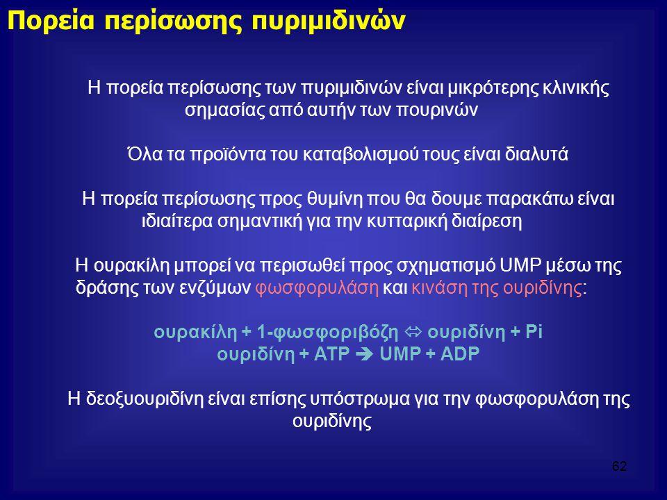 Πορεία περίσωσης πυριμιδινών Η πορεία περίσωσης των πυριμιδινών είναι μικρότερης κλινικής σημασίας από αυτήν των πουρινών Όλα τα προϊόντα του καταβολι