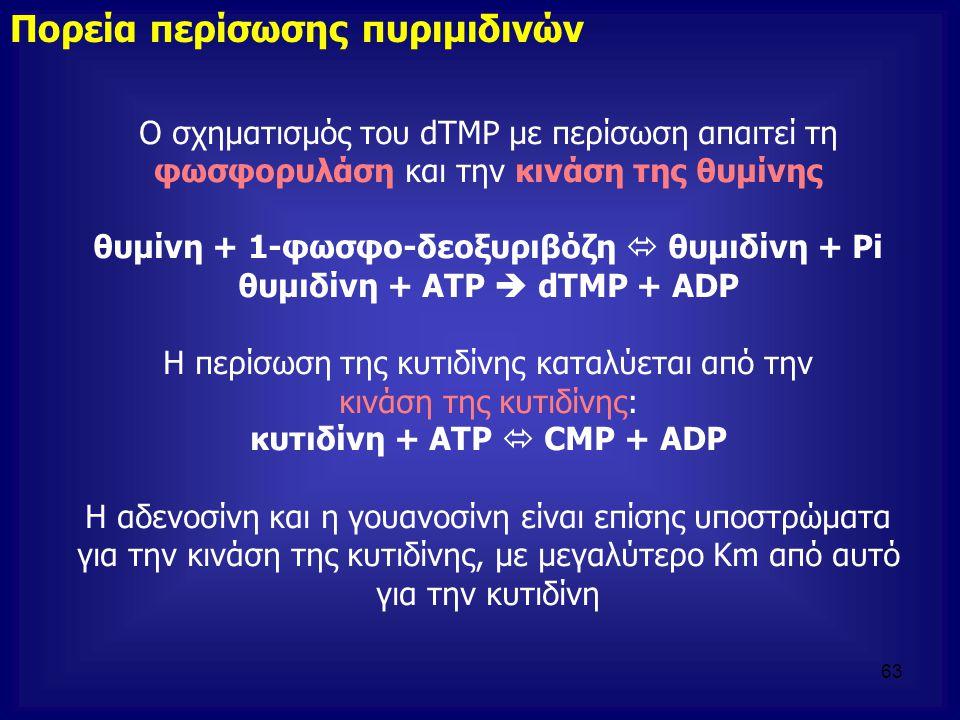 Ο σχηματισμός του dTMP με περίσωση απαιτεί τη φωσφορυλάση και την κινάση της θυμίνης θυμίνη + 1-φωσφο-δεοξυριβόζη  θυμιδίνη + Pi θυμιδίνη + ATP  dTM
