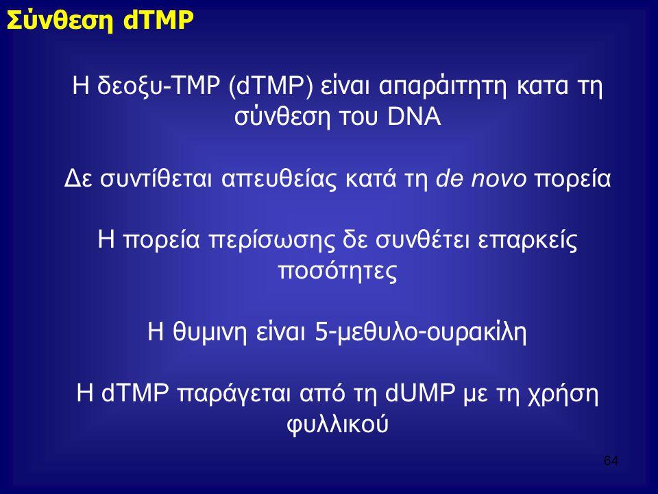 H δεοξυ- TMP (dTΜP) είναι απαράιτητη κατα τη σύνθεση του DNA Δε συντίθεται απευθείας κατά τη de novo πορεία Η πορεία περίσωσης δε συνθέτει επαρκείς πο