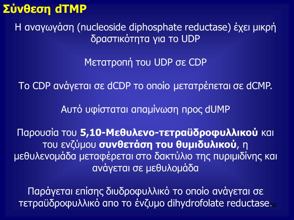 Η αναγωγάση (nucleoside diphosphate reductase) έχει μικρή δραστικότητα για το UDP Μετατροπή του UDP σε CDP Το CDP ανάγεται σε dCDP το οποίο μετατρέπετ
