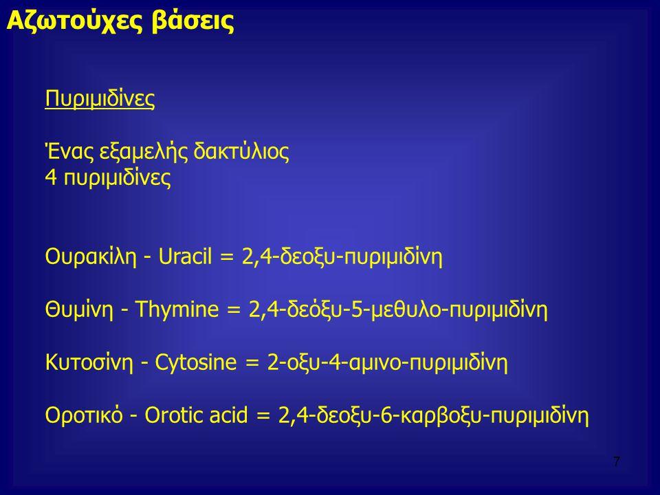 Πυριμιδίνες Ένας εξαμελής δακτύλιος 4 πυριμιδίνες Ουρακίλη - Uracil = 2,4-δεοξυ-πυριμιδίνη Θυμίνη - Thymine = 2,4-δεόξυ-5-μεθυλο-πυριμιδίνη Κυτοσίνη -