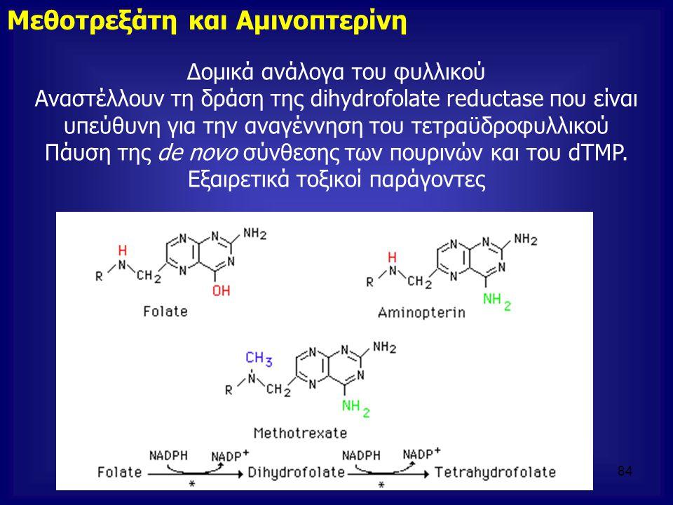 Μεθοτρεξάτη και Αμινοπτερίνη Δομικά ανάλογα του φυλλικού Αναστέλλουν τη δράση της dihydrofolate reductase που είναι υπεύθυνη για την αναγέννηση του τε