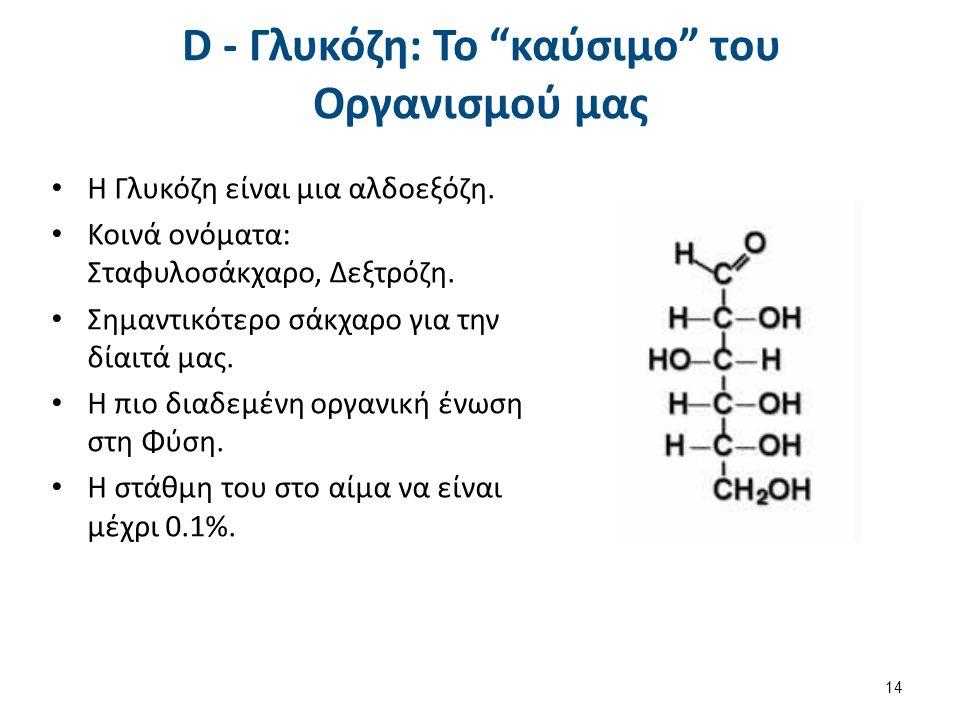 "D - Γλυκόζη: Το ""καύσιμο"" του Οργανισμού μας Η Γλυκόζη είναι μια αλδοεξόζη. Κοινά ονόματα: Σταφυλοσάκχαρο, Δεξτρόζη. Σημαντικότερο σάκχαρο για την δία"