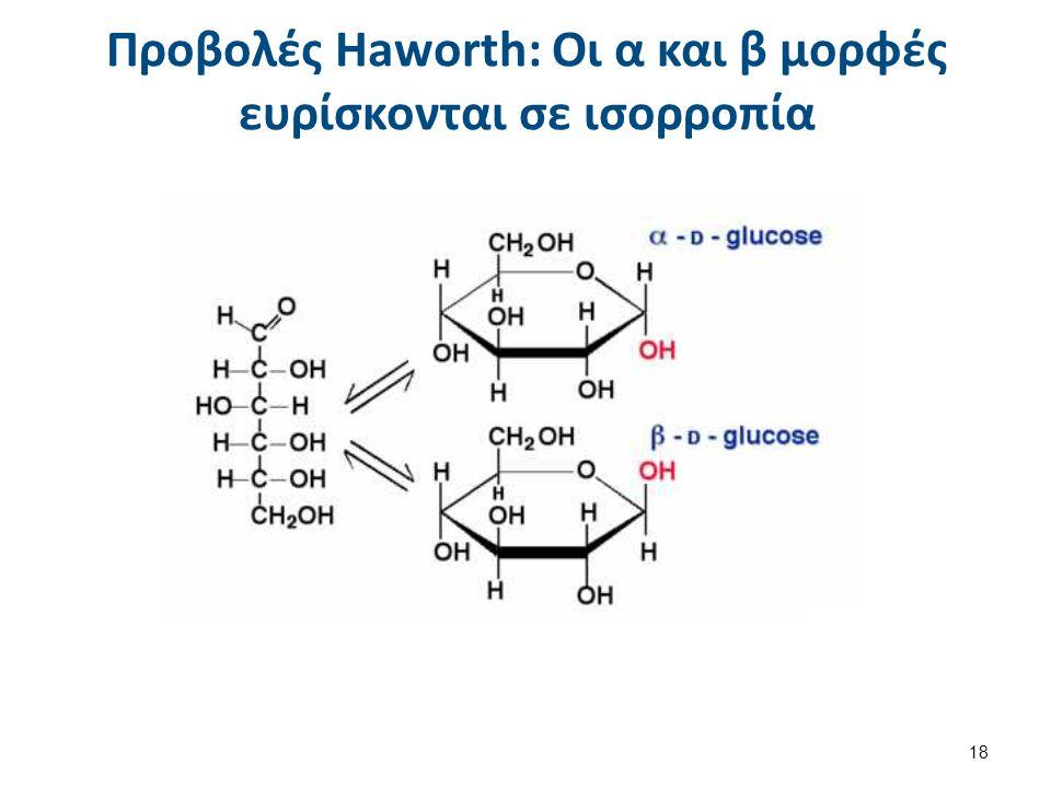 Προβολές Haworth: Οι α και β μορφές ευρίσκονται σε ισορροπία 18