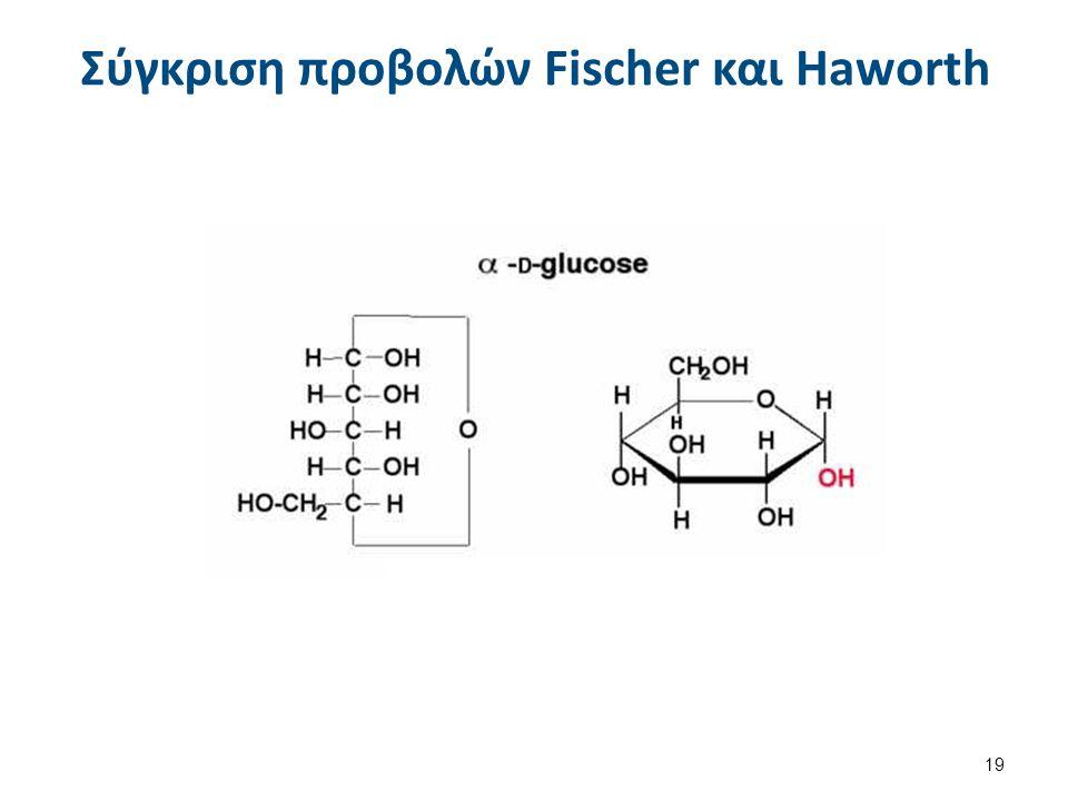 Σύγκριση προβολών Fischer και Haworth 19