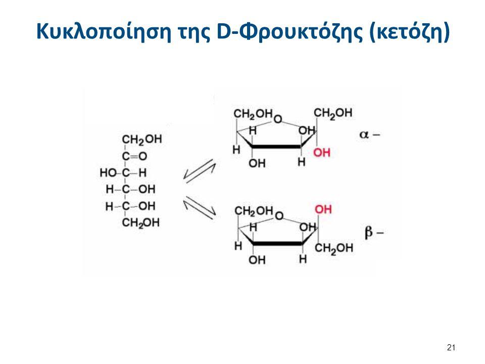 Κυκλοποίηση της D-Φρουκτόζης (κετόζη) 21