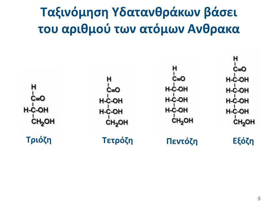 Ταξινόμηση Υδατανθράκων βάσει του αριθμού των ατόμων Ανθρακα Τριόζη Τετρόζη Πεντόζη Εξόζη 5