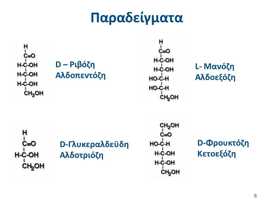 Παραδείγματα D – Ριβόζη Αλδοπεντόζη D-Γλυκεραλδεϋδη Αλδοτριόζη L- Μανόζη Αλδοεξόζη D-Φρουκτόζη Κετοεξόζη 6