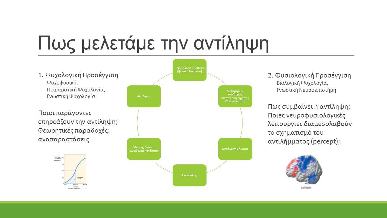 Υποδεκτικό Πεδίο (receptive field): περιβάλλον → ΝΣ Προϋπόθεση διέγερσης: Θα πρέπει το (κατάλληλο) ερέθισμα να πέφτει πάνω στο υποδεκτικό πεδίο του νευρώνα: Η περιοχή αισθητήριας επιφάνειας στην οποία η ύπαρξη ερεθίσματος προκαλεί αντίδραση του νευρώνα (επηρεάζοντας το ρυθμό πυροδότησής του – firing rate).