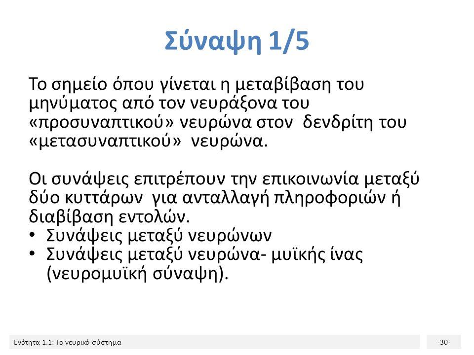 Ενότητα 1.1: Το νευρικό σύστημα-29- Πολλαπλή σκλήρυνση- MRI