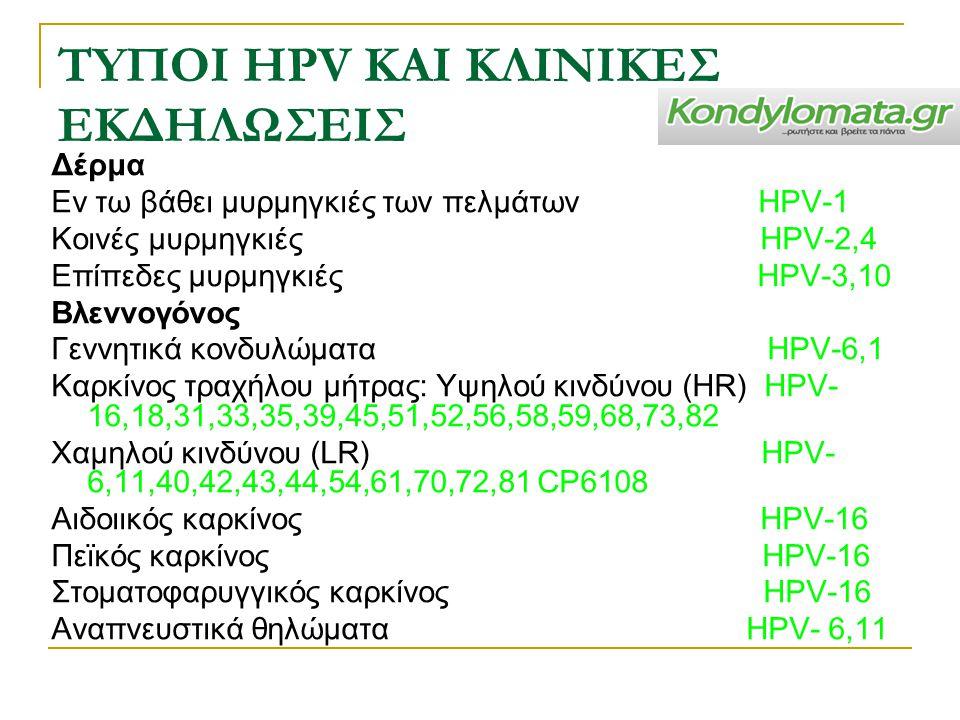 ΤYΠΟΙ HPV ΚΑΙ ΚΛΙΝΙΚEΣ ΕΚΔΗΛΩΣΕΙΣ Δέρμα Εν τω βάθει μυρμηγκιές των πελμάτων HPV-1 Κοινές μυρμηγκιές HPV-2,4 Επίπεδες μυρμηγκιές HPV-3,10 Βλεννογόνος Γ