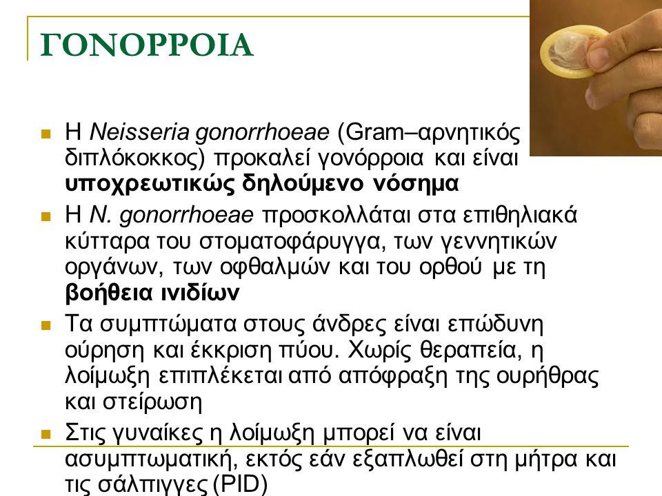 ΓΟΝΟΡΡΟΙΑ Η Neisseria gonorrhoeae (Gram–αρνητικός διπλόκοκκος) προκαλεί γονόρροια και είναι υποχρεωτικώς δηλούμενο νόσημα Η N. gonorrhoeae προσκολλάτα