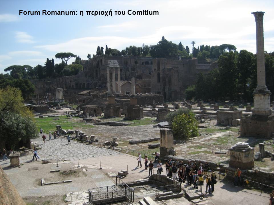 Forum Romanum: η περιοχή του Comitium