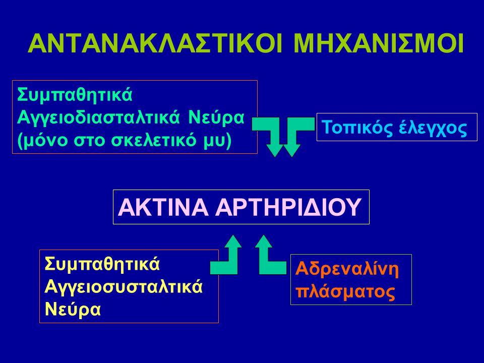ΑΝΤΑΝΑΚΛΑΣΤΙΚΟΙ ΜΗΧΑΝΙΣΜΟΙ Συμπαθητικά Αγγειοδιασταλτικά Νεύρα (μόνο στο σκελετικό μυ) ΑΚΤΙΝΑ ΑΡΤΗΡΙΔΙΟΥ Τοπικός έλεγχος Συμπαθητικά Αγγειοσυσταλτικά Νεύρα Αδρεναλίνη πλάσματος