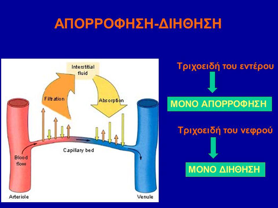 ΑΠΟΡΡΟΦΗΣΗ-ΔΙΗΘΗΣΗ Τριχοειδή του εντέρου ΜΟΝΟ ΑΠΟΡΡΟΦΗΣΗ Τριχοειδή του νεφρού ΜΟΝΟ ΔΙΗΘΗΣΗ